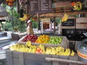 Harambe Fruit Market at Disney Animal kingdom park